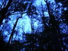 Thumbnail Valerie Diane- Restless Soul